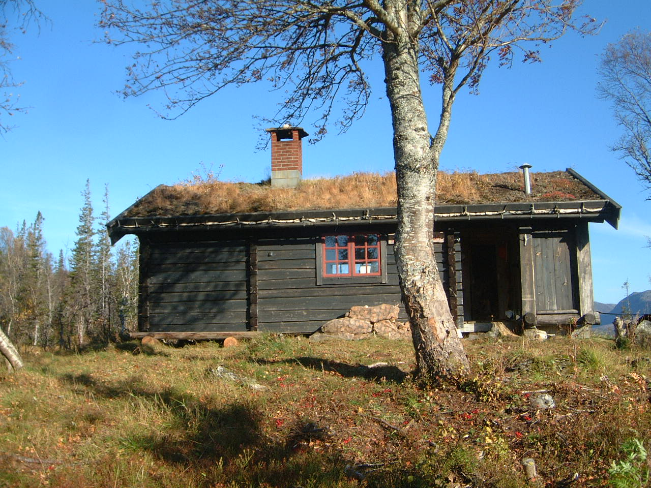 Steinkjer kommuneskoger Skjækerosstu 1