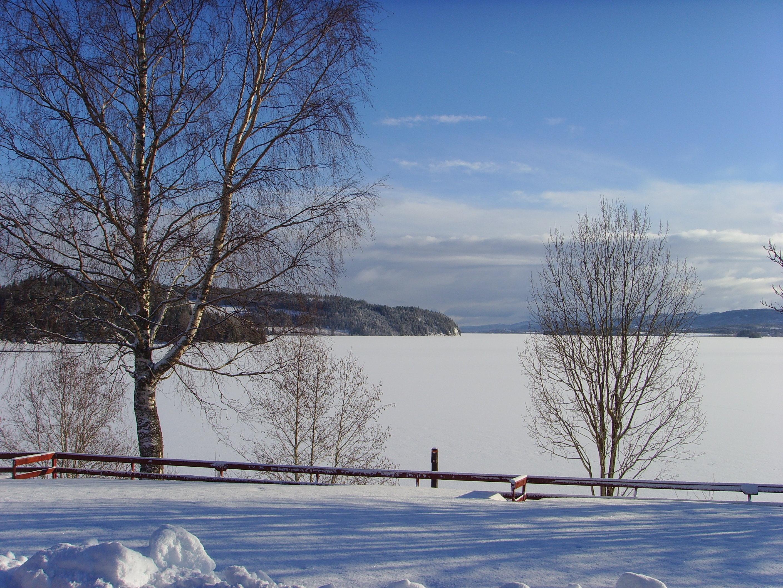 Føllingstua vinterutsikt over Snåsavatnet