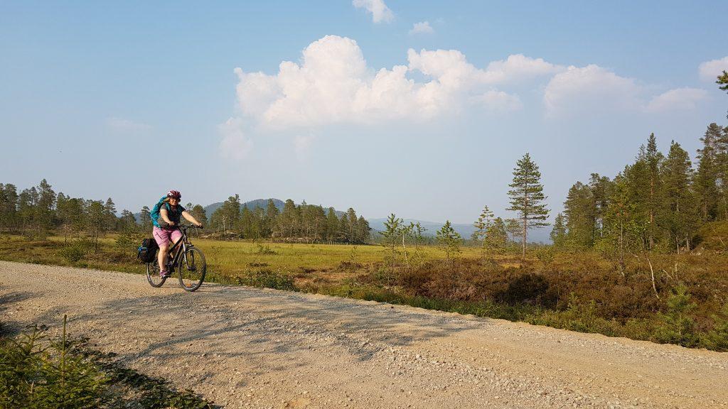 Sykkel i Lurudalen Snåsa