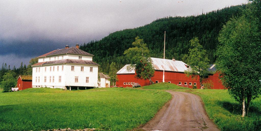 steinkjer mokk gård ute gården sommer
