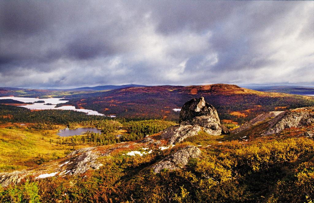 Raufjellet ved Grønningen i Snåsa. Foto: Steinar Johansen