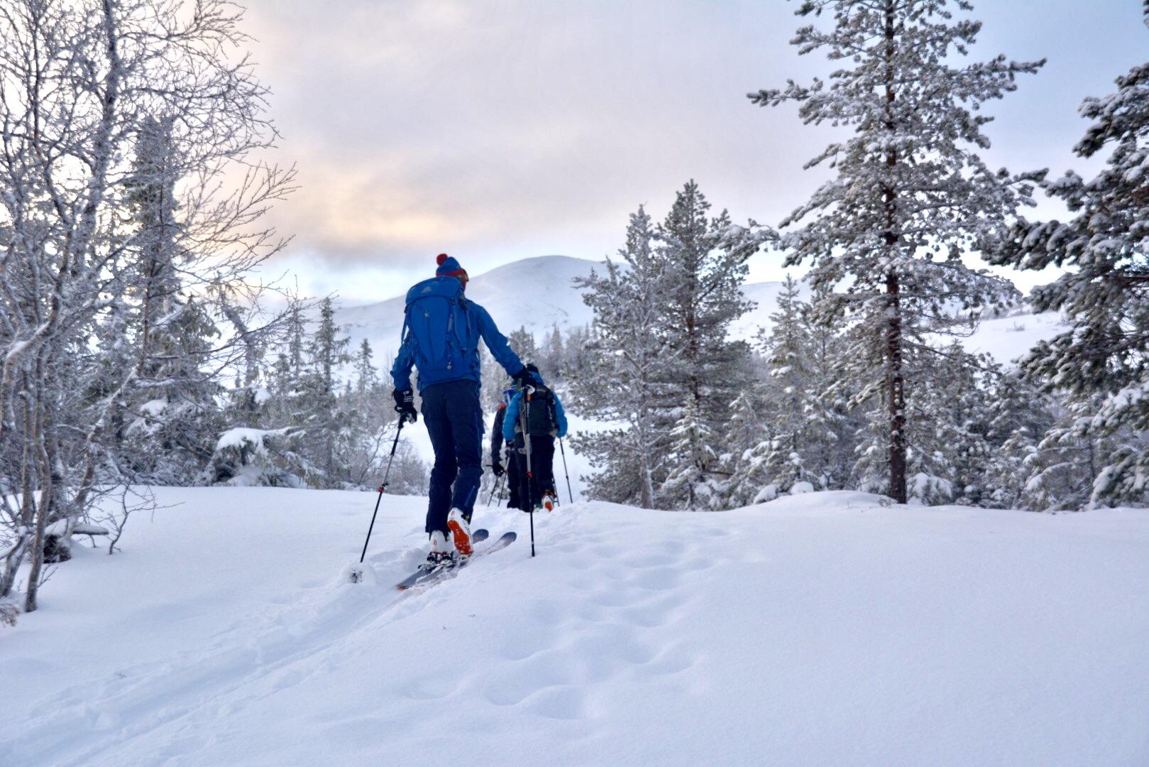 Skallstuggu, ski vinter Foto Skallstuggu